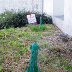 TERCAP, société de traitement contre les termites en Béarn et bigorre pose des pièges anti-termites SENTRITECH à Baigt de Béarn