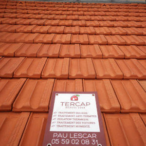 TERCAP réalise le démoussage des tuiles d'une maison de Tarbes dans les Hautes Pyrénées