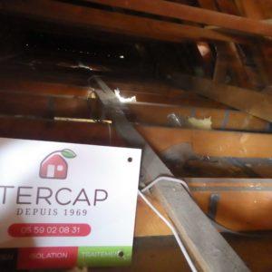 TERCAO isolation des combles à Lescar dans le Béarn