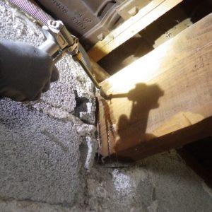 TERCAP traitement contre les vrillettes et les capricornes à Argelès-Gazost Hautes Pyrénées
