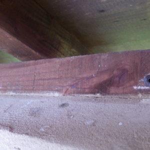 TERCAP traitement des bois de charpente dans les hautes pyrénées à Lascazères