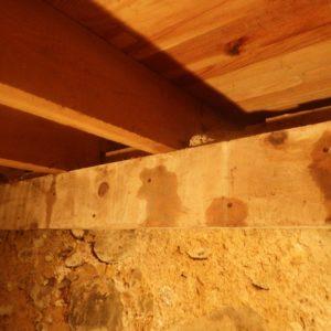 TERCAP traitement du solivage contre les vrillettes et capricornes à Pontacq en Béarn