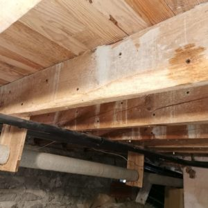 TERCAP réalise le traitement des solives contre les vrillettes et les capricornes à Pau Béarn