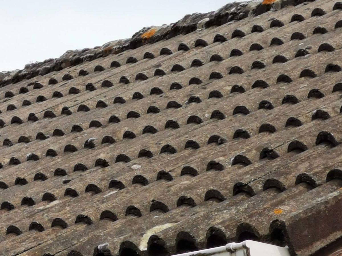 Démoussage d'une toiture à Lacq dans le Béarn | Tercap